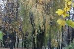 Банско през есента